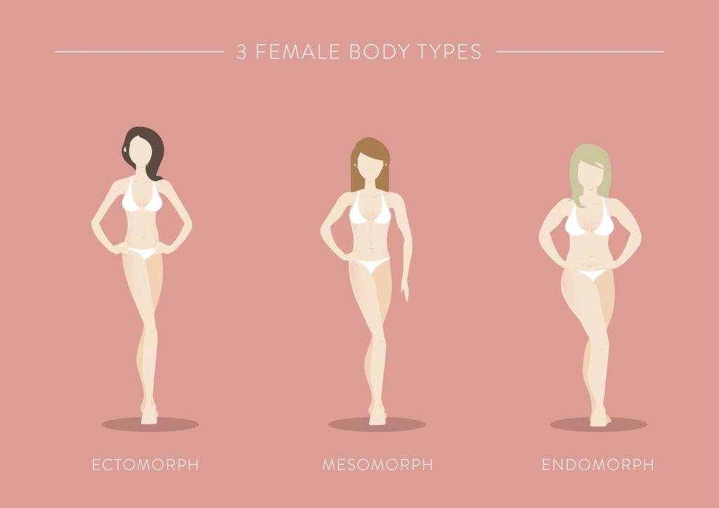 Three Female Body Types